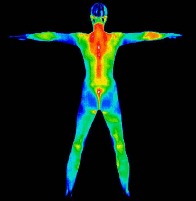 thermography2